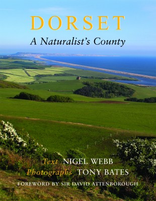 Dorset A Naturalists County Nigel Webb The Dovecote Press