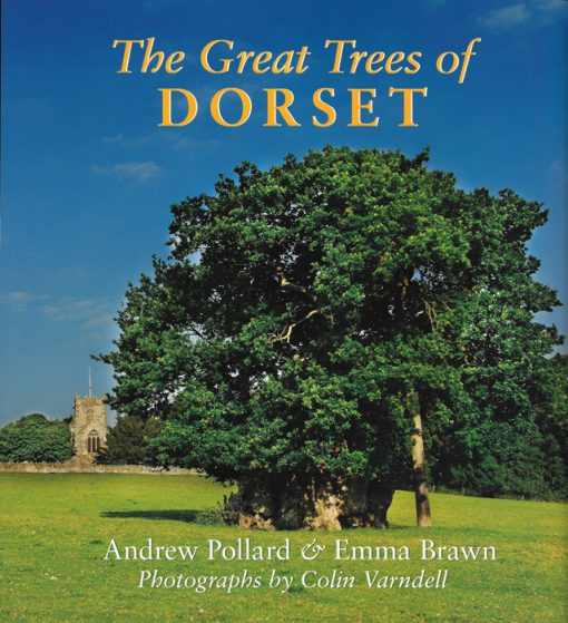 THE GREAT TREES OF DORSET Andrew Pollard & Emma Brawn The Dovecote Press